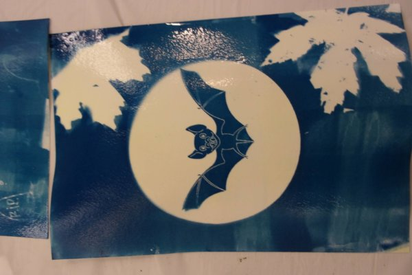 Students at a Youth-In-Custody facility participated in a two day art-science workshop creating cyanotype paper and then adding designs to their paper using stencils and exposure to sunlight.