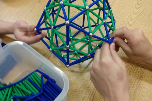 Students at a Youth-In-Custody facility interacted with a virologist and learned how to construct 3D models of real viruses!