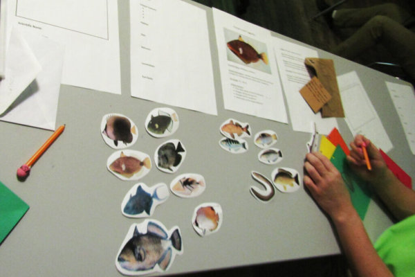 Students learned about fish species from a Natural History Biologist. They then got the opportunity to classify their own fish and create their own species.