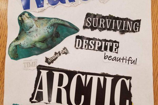 """Found Poem"" collage for Mission STEMCAP: Extinction"